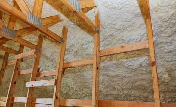 Our Guide to Mould Prevention and Insulation for Ontario Homes