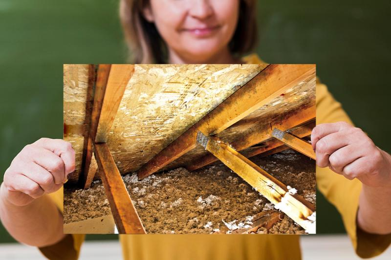 Do I need Insulation Removal Services?
